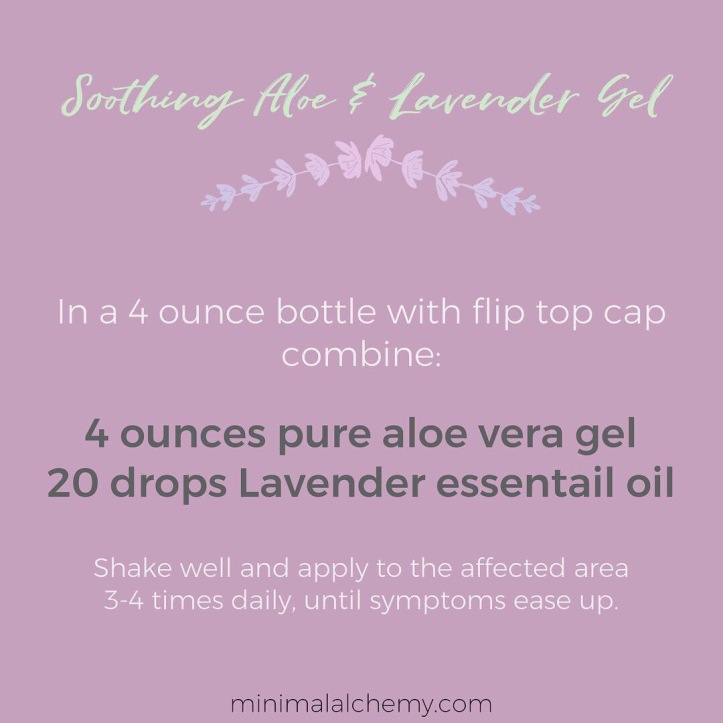 soothing aloe and lavender gel recipe minimal alchemy